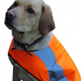 Naturally Reflective Dog Vest