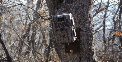 An in depth review of the best trail cameras in 2018