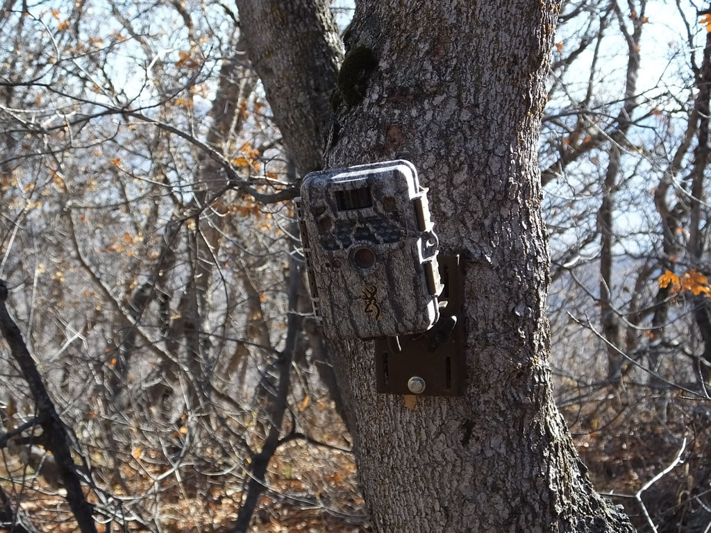 15 Best Trail Cameras Reviewed Amp Rated In 2018 Thegearhunt