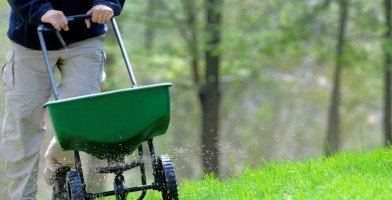 An in depth review of the best lawn fertilizer in 2018