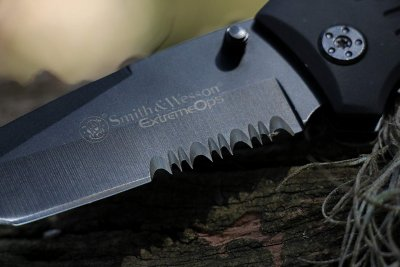 Smith & Wesson SWFR2S
