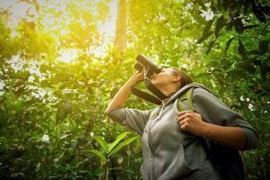 An in depth review of the best birding binoculars in 2018