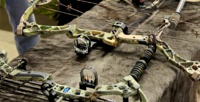 best compound bows rated