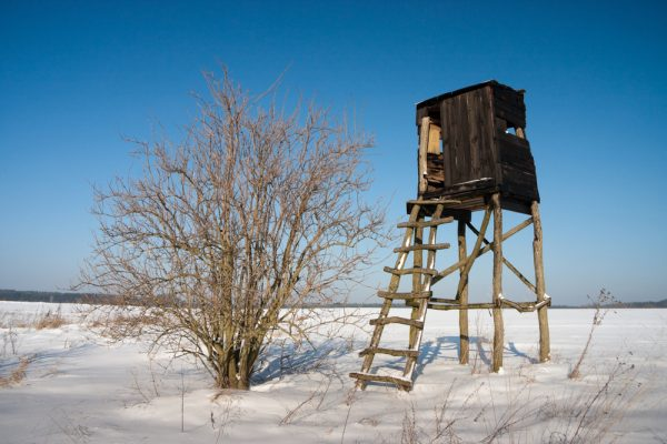 Best Hunting Blinds Reviewed