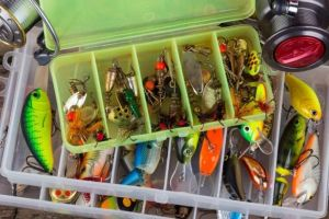 an in-depth review of the best fishing lures of 2018.