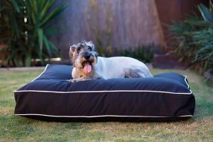 An in depth review of the best outdoor dog beds in 2018
