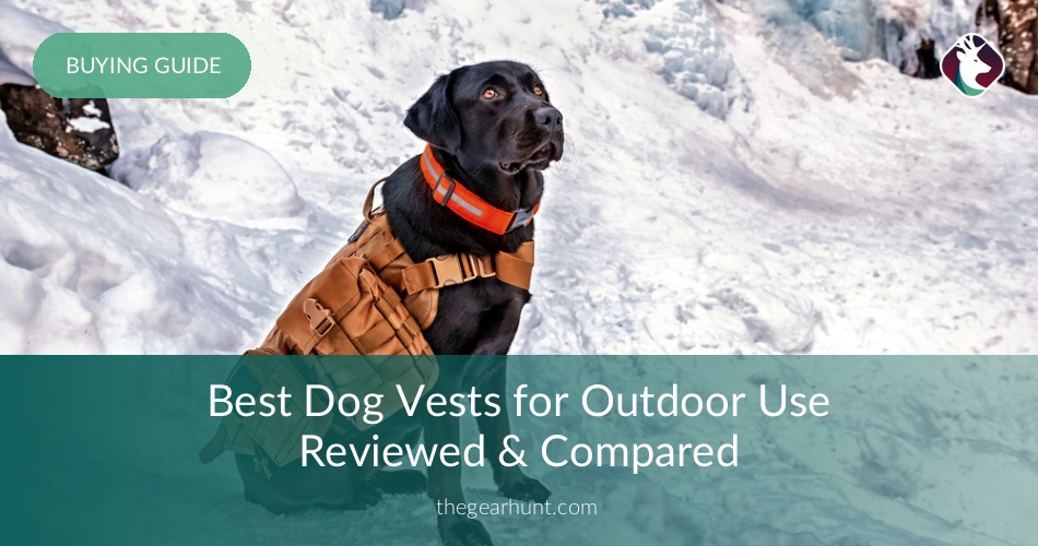 18642f723c470 10 Best Dog Vests for Outdoor Use Reviewed in 2019 | TheGearHunt