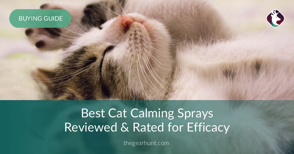 10 Best Cat Calming Sprays Reviewed In 2018 Thegearhunt