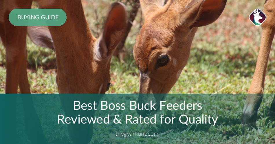 Best Boss Buck Feeders Reviewed & Rated for Quality